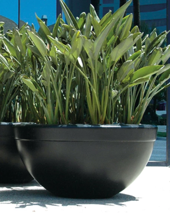 "48"" Executive Commercial Planter Bowls - Dark Walnut"