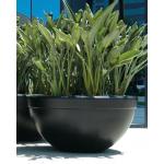 "48"" Executive Commercial Planter Bowls - Dark Walnut"