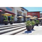 Luxe Planter Bowls at Mall - Dark Walnut