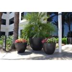 "36"" and 60"" Luxe Planter Bowls - Dark Walnut"