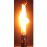 Vulcan Fire Module Head on Fire